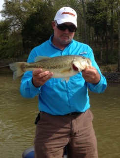 Jeff Lowdermilk, bass caught on Lake James