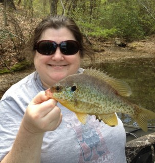 Betsy's Shell Cracker caught on Lake Hickory